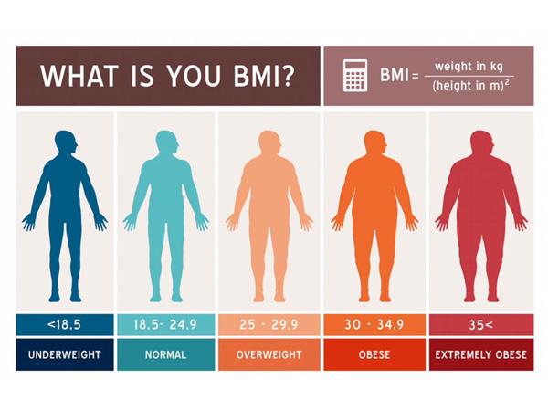 body mass index calculation