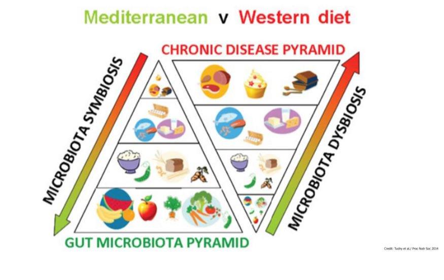 mediterranean versus western diet